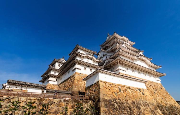 姫路城を支える、岐阜の東濃桧